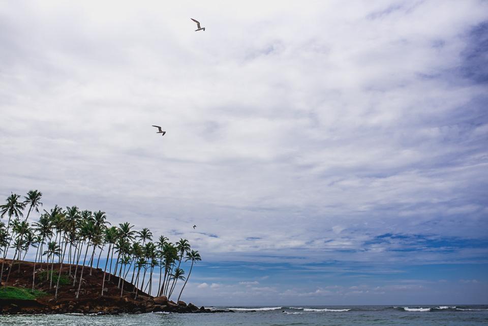 Sri Lanka Travel Photography-1