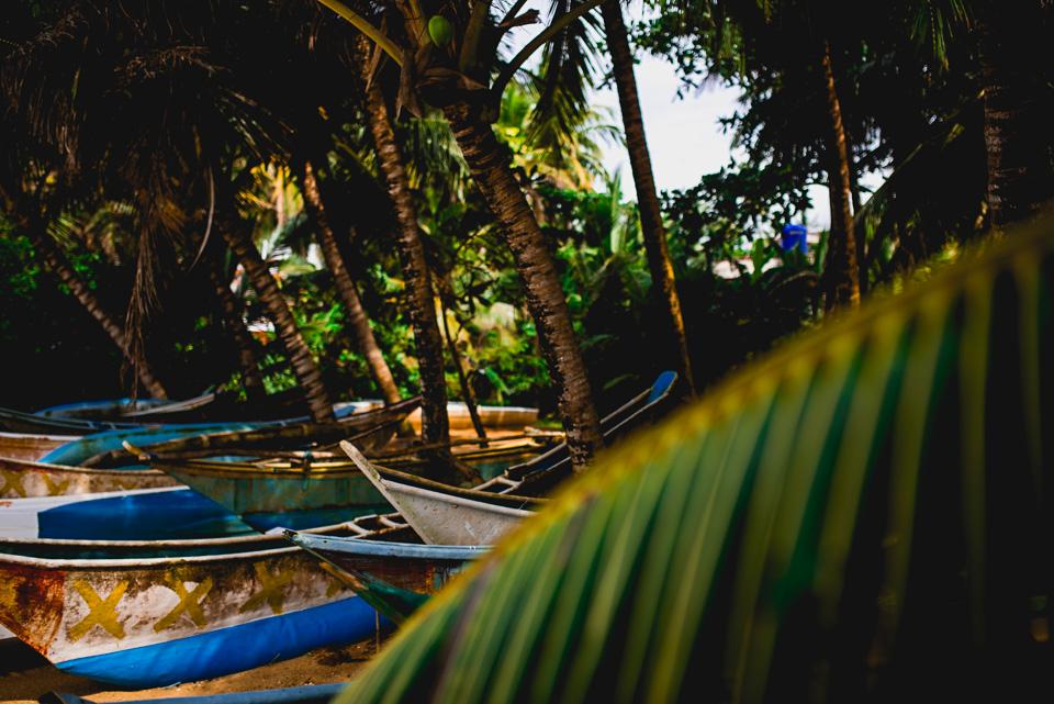 Sri Lanka Travel Photography-7