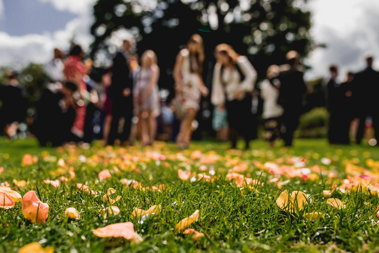 confetti on grass at trevenna